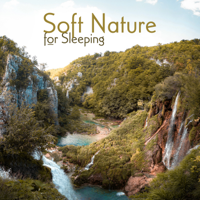 Peaceful Sleep Music Collection & Relaxing Nature Sounds Collection