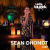 Sean Dhondt - Leef (Uit Liefde Voor Muziek) artwork