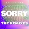 Joel Corry - Sorry (Majestic Remix)