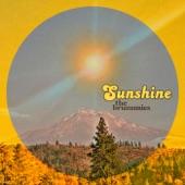 The Brummies - Sunshine