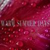 Warm Summer Days