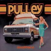Pulley - Immune