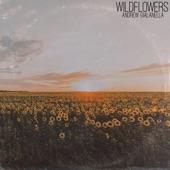 Andrew Gialanella - Wildflowers
