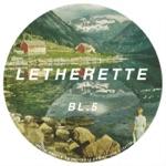 Letherette - Hip Plain