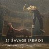 Show Me Love (Remix) [feat. 21 Savage & Miguel] - Single