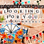 Divine Sweater - Looking for You (Everywhere)