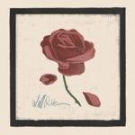 Will Rose - Nobody