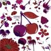 Cherries - Single