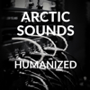 Arctic Sounds - Humanized artwork