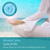 Meditations for Transformation Cycle of Life