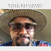 Ringo Madlingozi - Isiphithi Phithi artwork