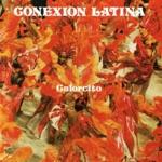 Conexion Latina - Despacito (Guajira)