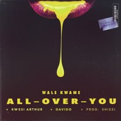 Wale Kwame - All over You