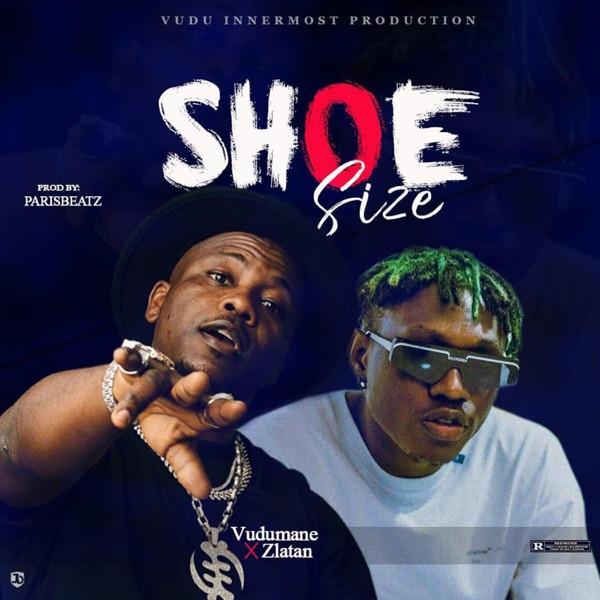 Shoesize (Remix) [feat. Zlatan] - Single