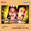 Gokulathil Seethai Original Motion Picture Soundtrack