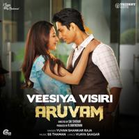 Veesiya Visiri (From