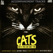 Songs from Cats: Karaoke