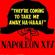 Napoleon XIV They're Coming to Take Me Away, Ha-Haaa! - Napoleon XIV