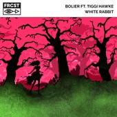 Bolier - White Rabbit (feat. Tiggi Hawke)