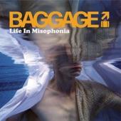 Baggage - E-350