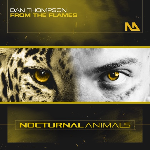 From the Flames - Single by Dan Thompson