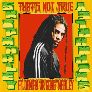 "Skip Marley - That's Not True feat. Damian ""Jr. Gong"" Marley"