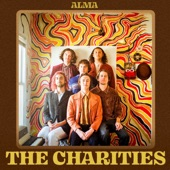 The Charities - Mistakes