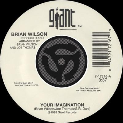 Your Imagination / Your Imagination (A Cappella) [Digital 45] - Brian Wilson