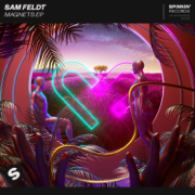 Post Malone (feat. RANI) - Sam Feldt - Sam Feldt