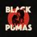 Black Pumas Colors - Black Pumas