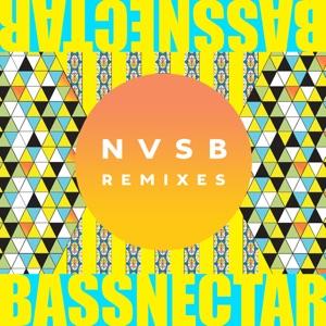 Bassnectar - Noise feat. Donnis