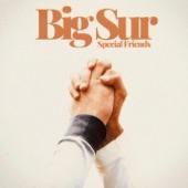 Special Friends - Big Sur