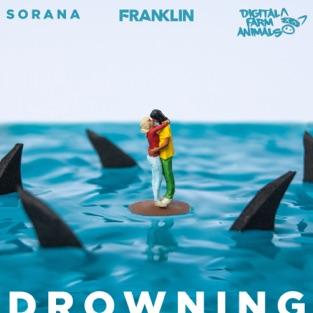 Franklin, Digital Farm Animals & Sorana – Drowning – Single [iTunes Plus AAC M4A]