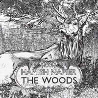 The Woods by Hamish Napier on Apple Music