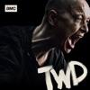 The Walking Dead, Season 10 image