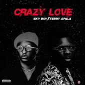 Crazy love (feat. Terry apala) artwork