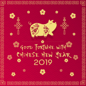 Good Fortune with Chinese New Year 2019 – Asian Experience, Yin Earth Pig, Oriental Festival, Traditional Celebration