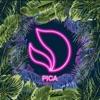 Pica - Single