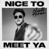 nice-to-meet-ya-single