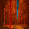 Martin Kohlstedt - PAN artwork