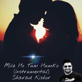 Mile Ho Tum Humko (Instrumental)