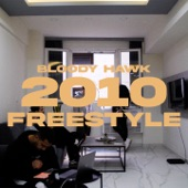 2010 Freestyle artwork