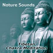 Nature Sounds – Relaxation & Tibetan Chakra Meditation, Healing Massage and Spa, Yoga Music Sound Therapy for Chakra Balancing, Baby Deep Sleep, Studying Music - Chakra Healing Music Academy