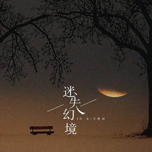 In K & 王忻辰 - 迷失幻境 (DJ版)