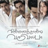 Vinnaithaandi Varuvaayaa (Original Motion Picture Soundtrack)