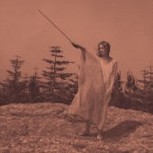 Unknown Mortal Orchestra - Swim and Sleep (Like a Shark)