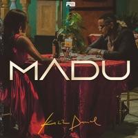 Kizz Daniel - Madu - Single