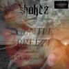 Gentle Breeze feat Skateraid Kay Kay Single
