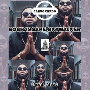 Carvo Cardo - Soshangane Skywalker
