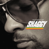 In The Summertime Feat. Rayvon Shaggy - Shaggy